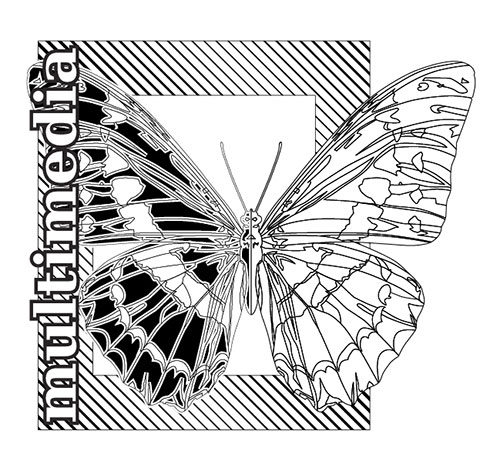 Vector Butterfly black