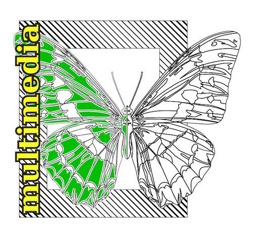 Vector Butterfly green